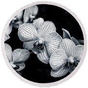 Stream Of Orchids Round Beach Towel
