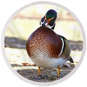 Like This Wood Duck Round Beach Towel