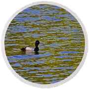 Striking Scaup Round Beach Towel