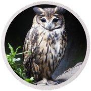 Striped Owl Round Beach Towel