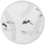Stroboscopic Study Of Flying Arctic Tern Over Lake Round Beach Towel
