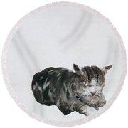 Study Of Cat Round Beach Towel
