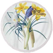 Study Of Four Species Of Crocus Round Beach Towel