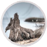 Stump Dragon Round Beach Towel