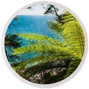 Subtropical Forest Of Abel Tasman Np In New Zealand Round Beach Towel