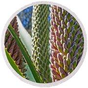 Succulents IIi Round Beach Towel