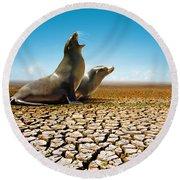 Suffering Seals Round Beach Towel