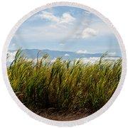 Sugar Cane Field - Maui Round Beach Towel