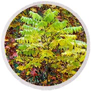 Sumac Leaves In The Fall Round Beach Towel