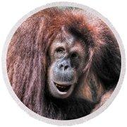 Sumatran Orangutan Round Beach Towel