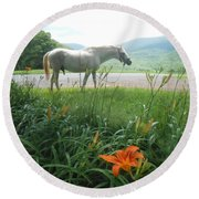 Summer Day Memories With The Paso Fino Stallion Round Beach Towel by Patricia Keller