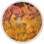 Summer Deer Round Beach Towel