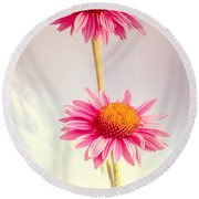 Summer Impressions Cone Flowers Round Beach Towel