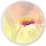 Summer In A Day Round Beach Towel