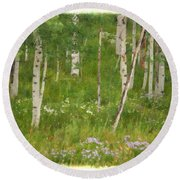 Summer In The Colorado Mountains Round Beach Towel