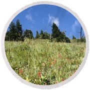Summer Mountain Landscape Round Beach Towel