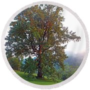 Summer Poplar Tree Filtered Round Beach Towel