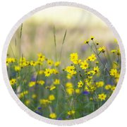 Summer Wildflowers On The Rim  Round Beach Towel