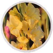 Summer Yellow Gladiolus Round Beach Towel