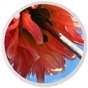 Summer's End Dahlia Round Beach Towel