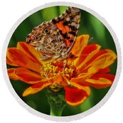 Summers Last Butterfly Round Beach Towel