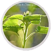 Sun Drenched Sunflower With Bible Verse Round Beach Towel