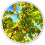 Sun Kissed Green Grapes Round Beach Towel by Eti Reid