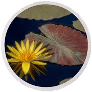 Sun-kissed Water Lily Round Beach Towel