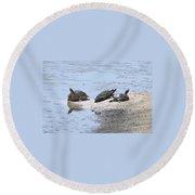 Sun Turtles Round Beach Towel