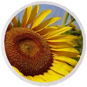 Sun Worshipper Round Beach Towel