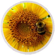Sunflower And A Bee Round Beach Towel