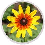 Sunflower At Full Bloom  Round Beach Towel