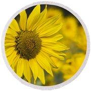 Sunflower Blossom Round Beach Towel