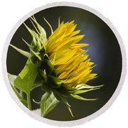 Sunflower Bright Side Round Beach Towel