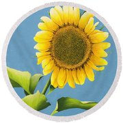 Sunflower Charm Round Beach Towel
