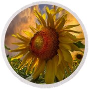 Sunflower Dawn Round Beach Towel by Debra and Dave Vanderlaan