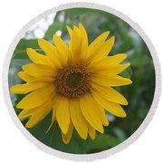 Sunflower Directly... Round Beach Towel