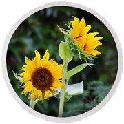 Sunflower Duo Round Beach Towel