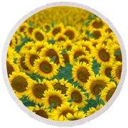 Sunflower Explosion Round Beach Towel