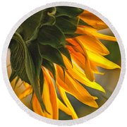 Sunflower Farm 1 Round Beach Towel