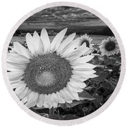 Sunflower Field Forever Bw Round Beach Towel