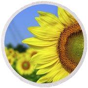 Sunflower In Sunflower Field Round Beach Towel