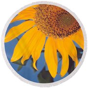 Sunflower In The Corner Round Beach Towel