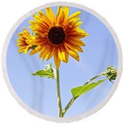Sunflower In The Sky Round Beach Towel