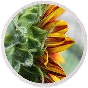 Sunflower Named The Joker Round Beach Towel