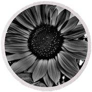 Sunflower In Black And White Round Beach Towel