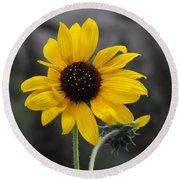 Sunflower On Gray Round Beach Towel