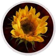 Sunflower Opening Round Beach Towel
