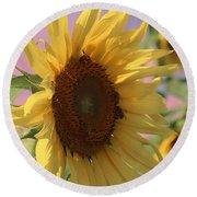 Sunflower Pop Round Beach Towel