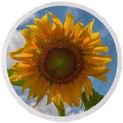Sunflower Power Round Beach Towel